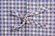 Bow from Amish Bed Linen - Blue